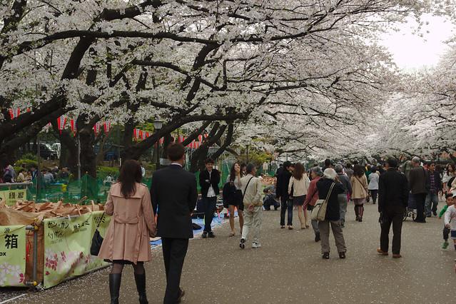 0601 - Ueno Park