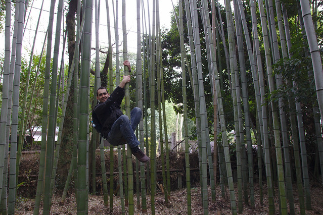 0809 - Arashiyama bosque bambú
