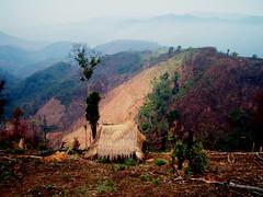 PEI Laos