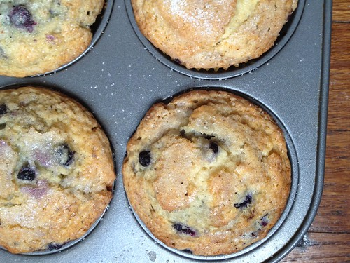 Malted Milk and Maple Blueberry Muffins