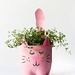d82krai posted a photo:	Turn an empty soda bottle into an adorable kitty plant planter for catnip, herbs, or even a cactus or succulent! Easy to make and so cute! // Salty CanarySource by hockeymom161 sharekid.com/diy-soda-bottle-kitty-cat-planters-4/#ShareKid