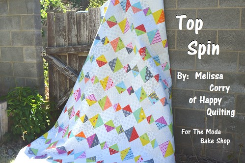 Top Spin Quilt