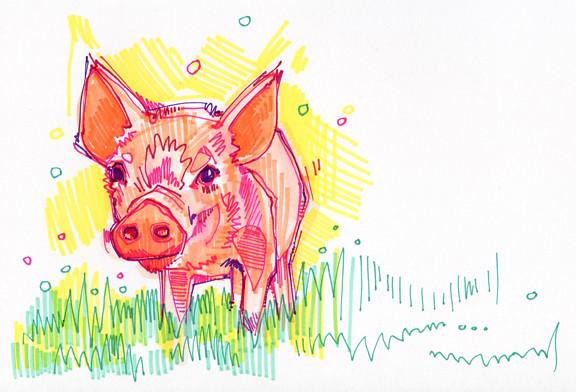 Flickr photo sharing - Dessin d un cochon ...
