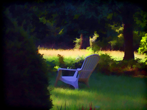 trees ohio summer sun home field grass sunshine yard chair backyard shadows cincinnati evergreen summertime readingplace aplacetosit relaxingplace photographyplace viewofthegarden