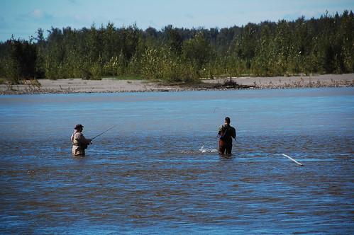Montana river, alaska