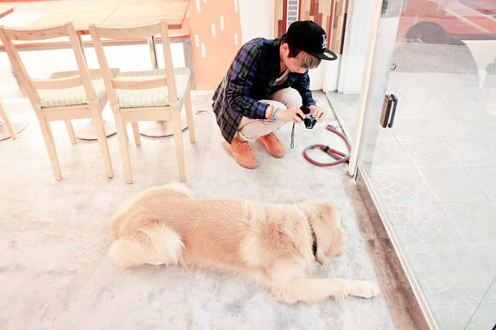 me taking picture of the dog 阿毛 Risotto cafe