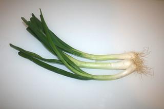 06 - Zutat Frühlingszwiebeln / Ingredient spring onions