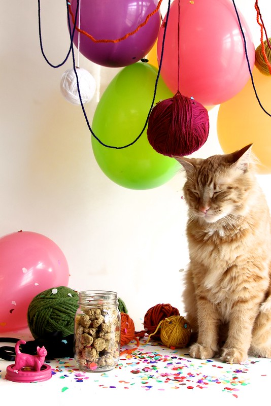 Yarn Ball Catnip Toys