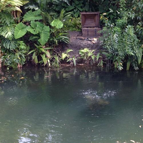 向かいに財宝、水の中にもなにかある。
