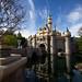 Disneyland February 2013
