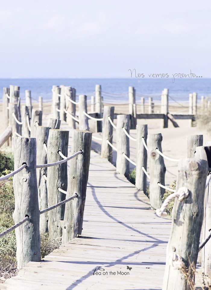 Playa delta ebro