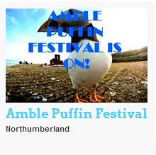 puffin blog