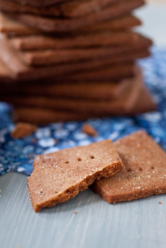 DIY cinnamon graham crackers