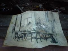 Found in an abandoned wooden villa in Kruunuvuori