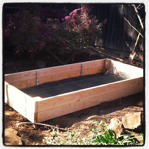 My love made me a raised bed!
