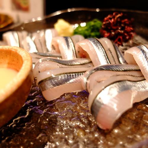 Silver-stripe round herring