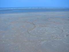 horizon, beach, sand, sea, ocean, body of water, wind wave, mudflat, wave, shore, coast,