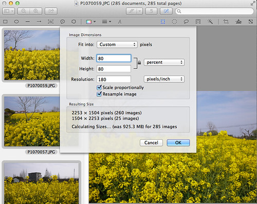 batch resize images in OSX Finder
