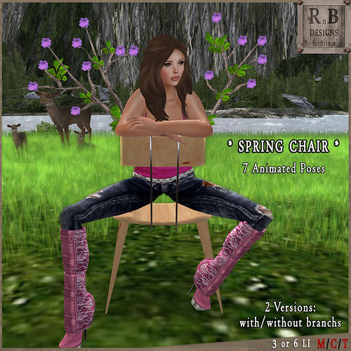 GIFT ! *RnB* Spring Chair - 7 Animations (np)