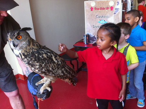 Raptor Rescue to return for Summer Science Blast Day Camps by Karen E. Wissing