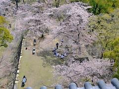 広島城から