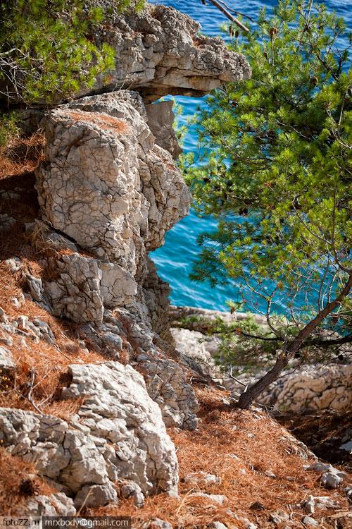 20-Wild-Makarska