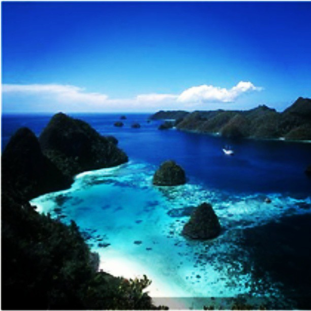 Raja ampat islands west papua indonesia has a beautiful underwater scenery is stunning - Beautiful panoramic view house to take full advantage of the scenery ...