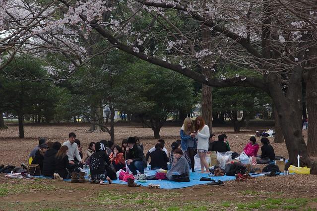 0048 - Parque Yoyogi