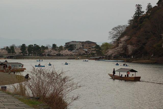 0823 - Arashiyama bosque bambú