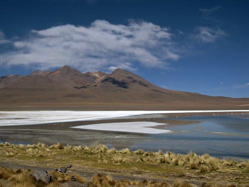 travel lake mountains landscape flamingos bolivia lagunacañapa
