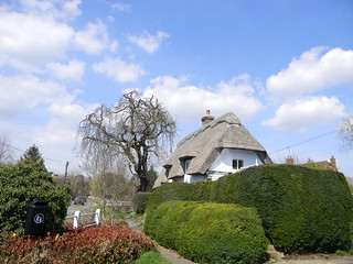 Thatched cottage Arkesden