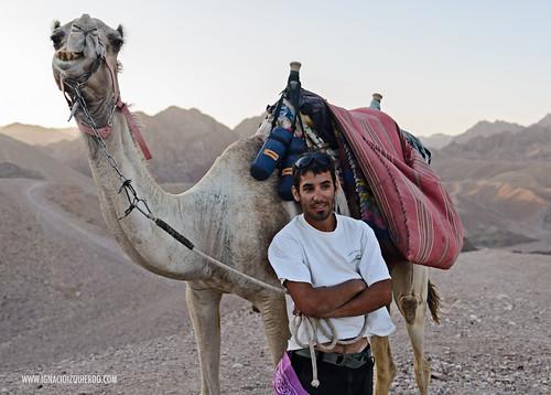 Israel - Neguev Desert - Nahal Shlomo 04