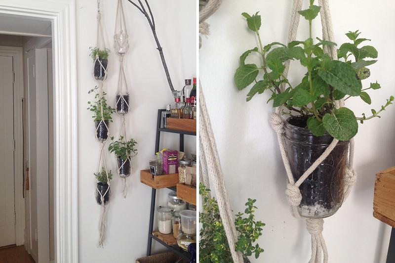 Exceptional Hanging Herb Garden