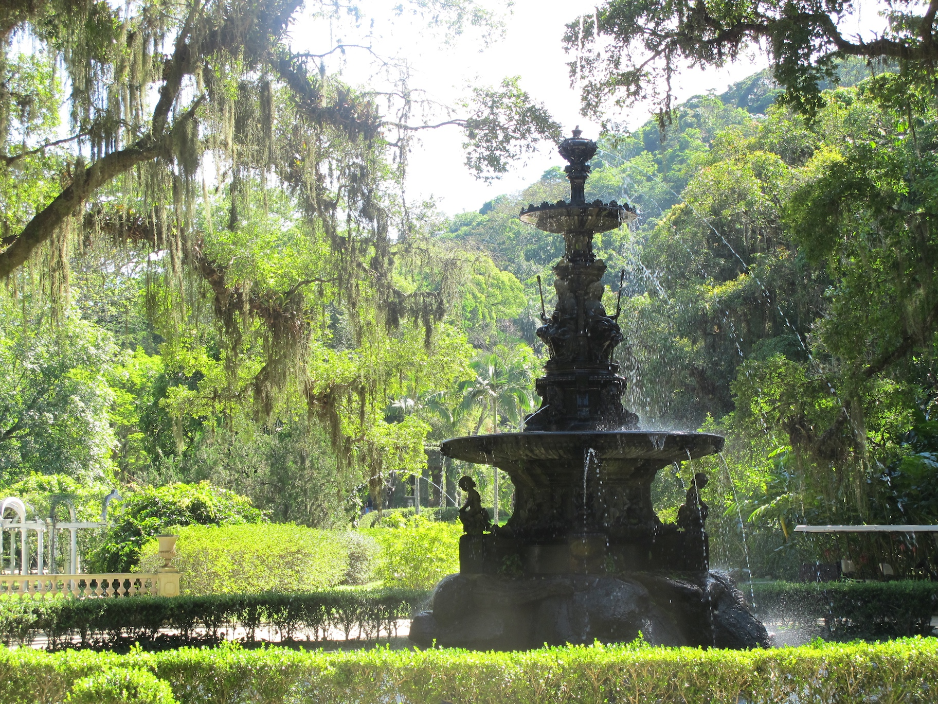 The beautiful and historical Botanical Garden
