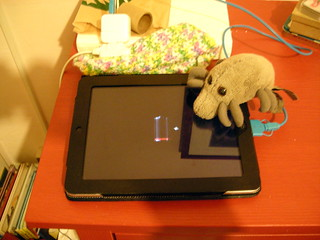 Dust Mite watches Silas's iPad recharge