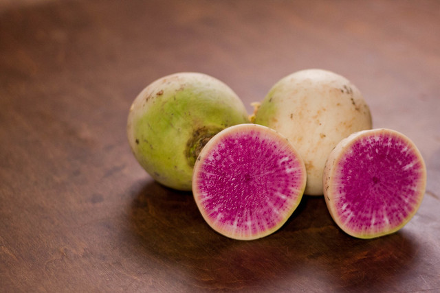 watermelon radish, radish, ontario produce, types of radishes