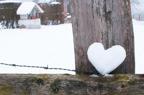 ★☆ 2013 - P12_M02 Thème ☆★ Février : L'amour