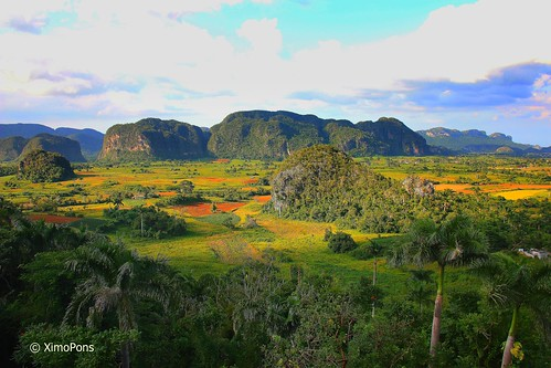 Valle de Viñales  026 by XimoPons