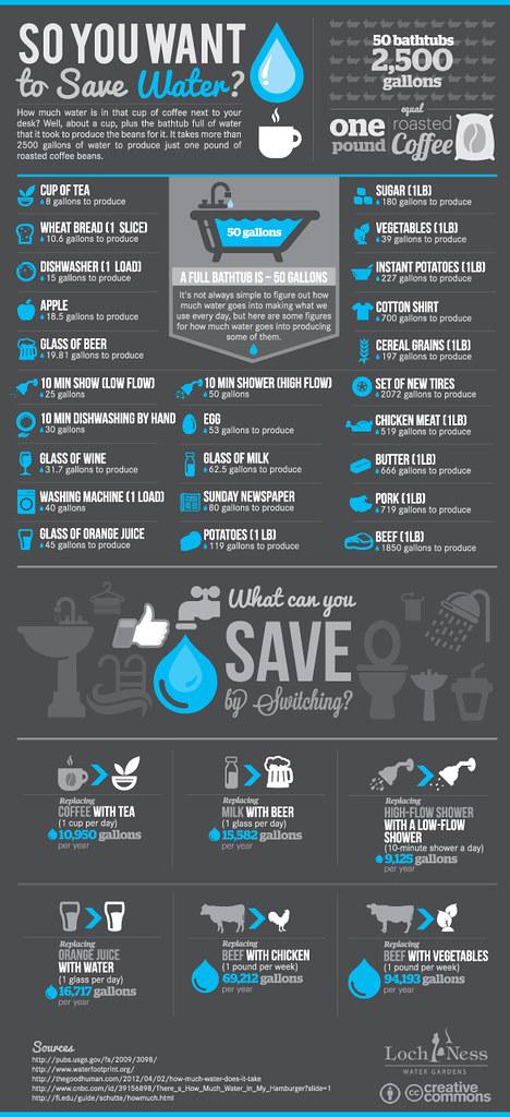 savewater-Infographic