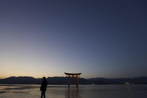 厳島神社 大鳥居 夕景