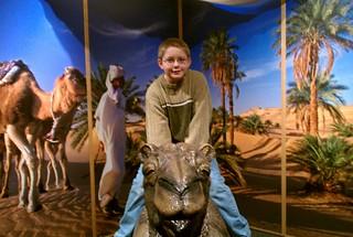 Noah rides a camel