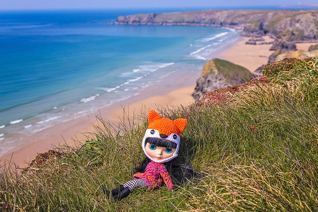 Bella the travelling fox admires the view looking out to the Bedruthan Steps