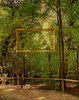 """One of the Inspirations for the series """"Framed"""" - Golden Frames at the Zoo - Tiergarten Schönbrunn by hedbavny"""