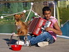 Boy with dog and box