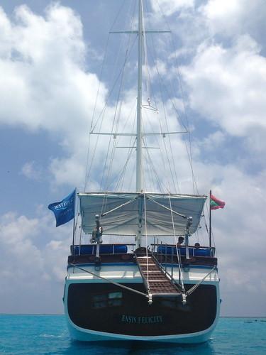 Adi's Maldivian Adventure9