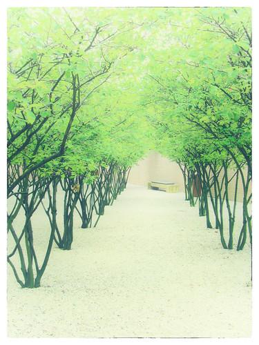 park trees green art garden liechtenstein vaduz