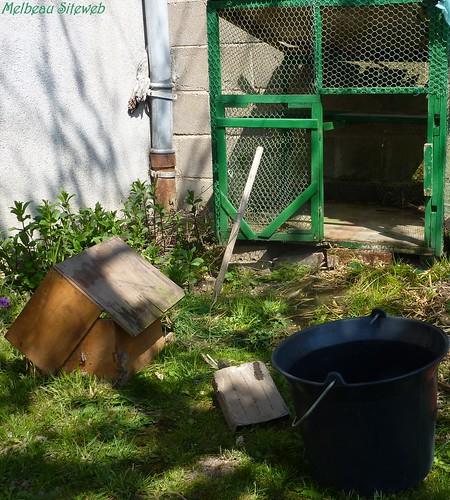 Au jardin printanier