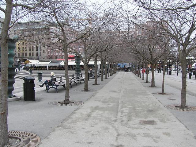 Kunsträdgarden