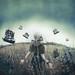 Fleet by Kindra Nikole