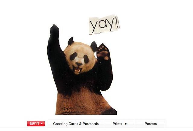 app panda